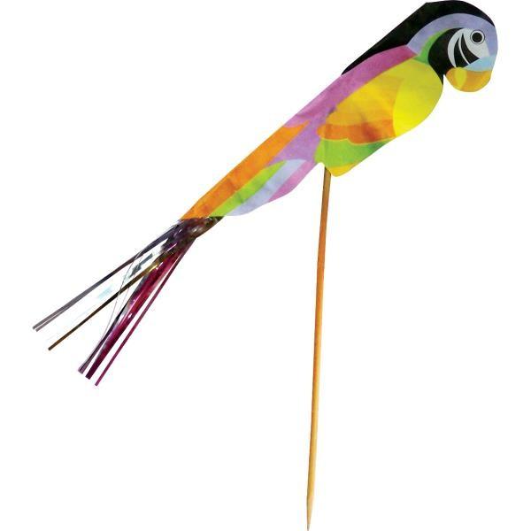 PA12301_Parrot_Picks_011417001